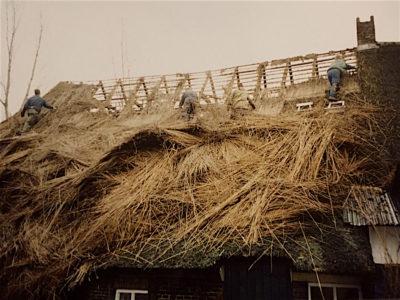 oude rieten dak wordt verwijderd en zo mogelijk hergebruikt